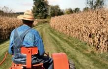 Как начать фермерское хозяйство с нуля?