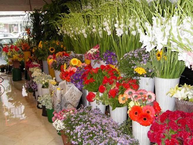 Ассортимент цветов