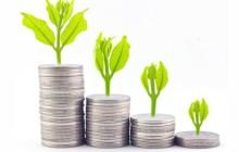 Капитализация процентов: понятие, виды, условия, плюсы и минусы